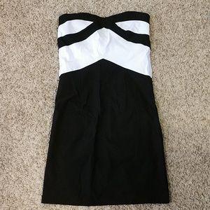 NWT Bodycon Dress